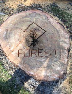 Forest Tree Service PTY LTD