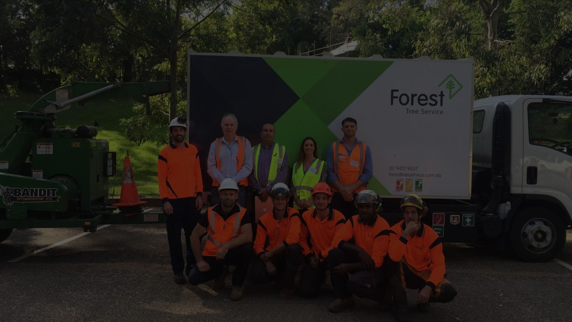 Forest Tree Service - Sydney Arborists